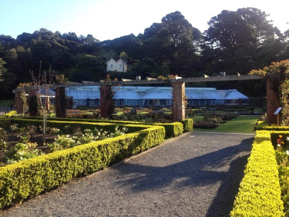 Rose Gardens Wellington in Spring