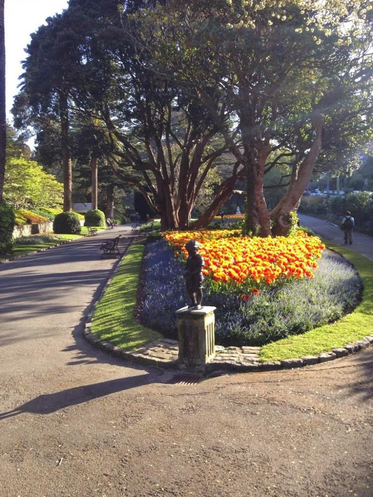 Botanic Gardens Wellington in Spring