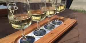 A tour of New Zealand wineries and platters